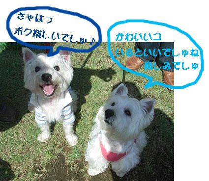 とわのコピー.jpg